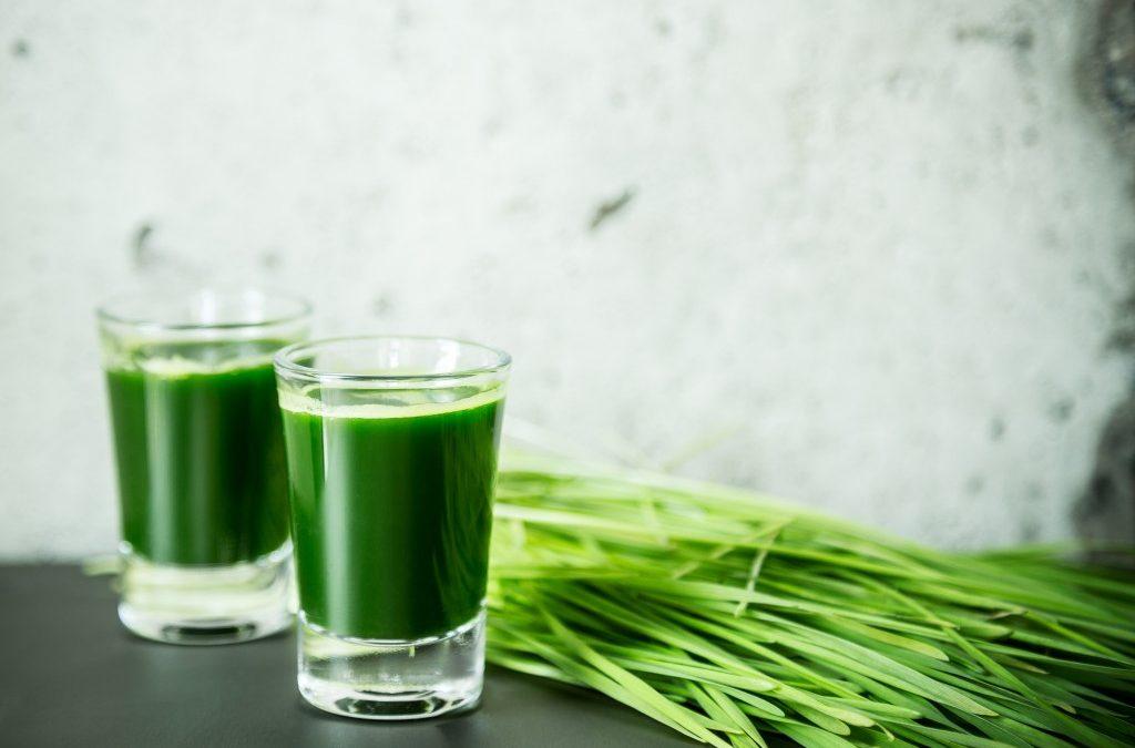 L'herbe de blé : un super aliment ou un autre jus vert bizarre?